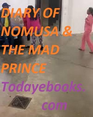 DIARY OF NOMUSA & THE MAD PRINCE EPUB 1